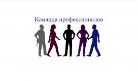 Команда профессионалов